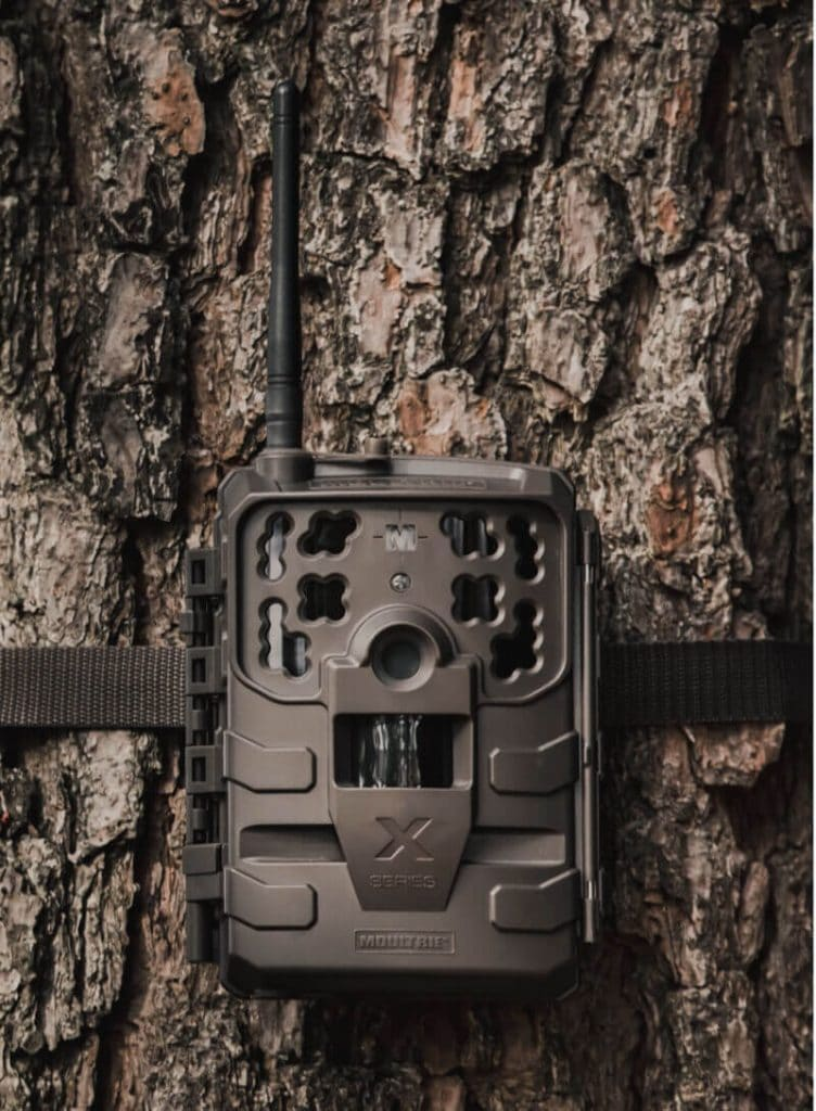 Moultrie Cellular Trail Camera attached to tree