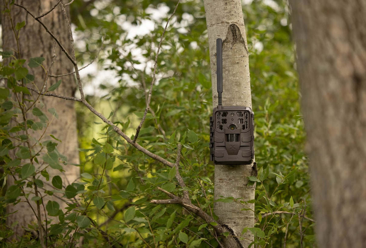 Moultrie Mobile X Series Cellular Trail Camera Mounted To Tree