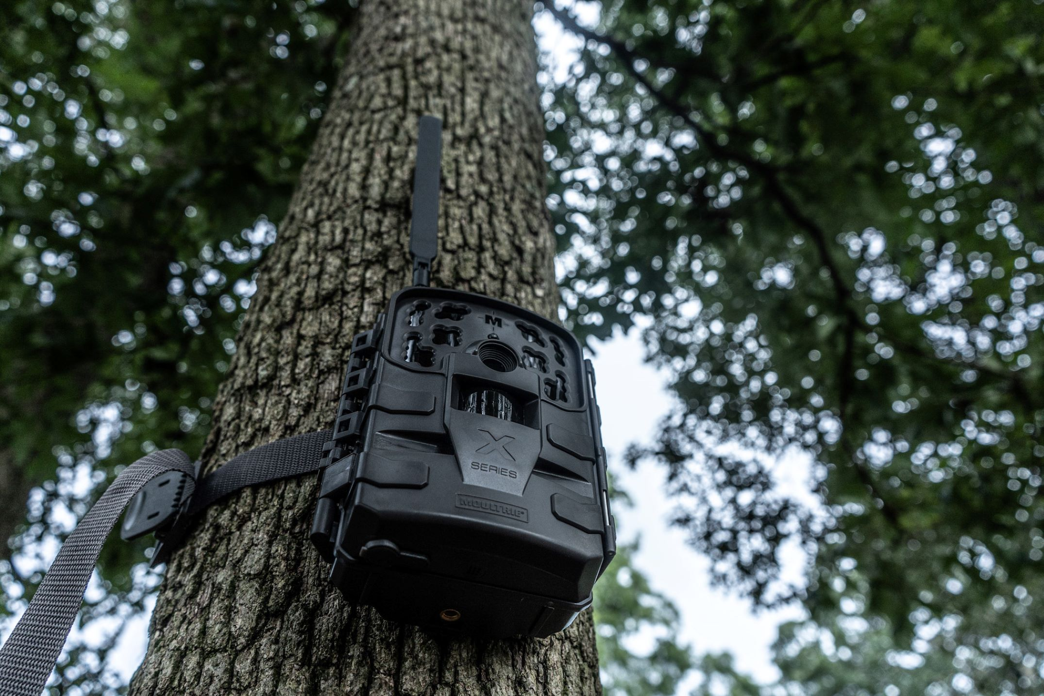 can-trail-cameras-be-used-for-home-security