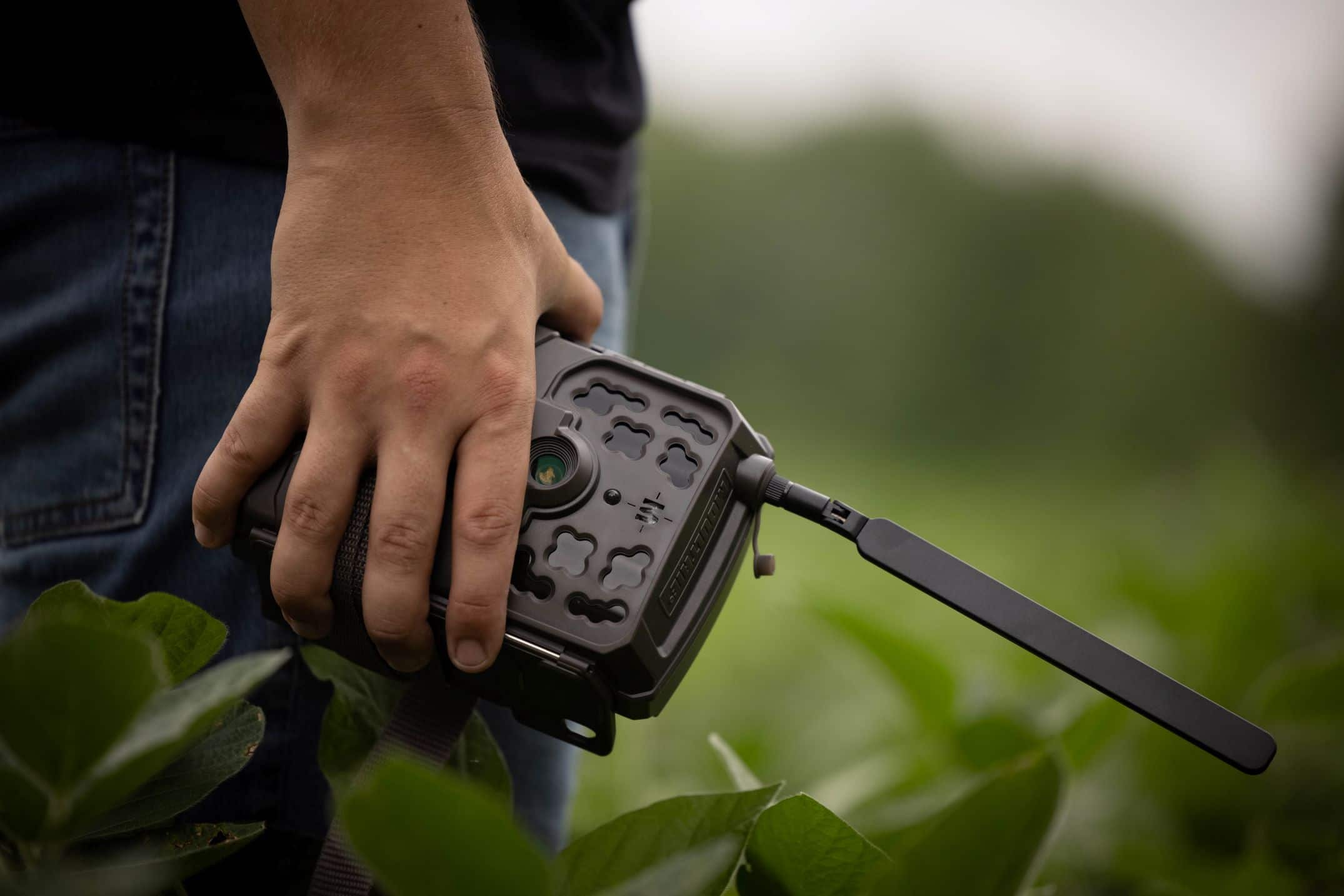 common-trail-camera-mistakes-and-fixes
